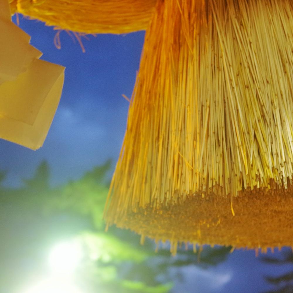 島根県のグルメ・観光 トリセツシマネ
